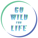 World Environment Day 2016: Let's 'Go Wild For Life'