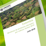 2015 Colombia Coca Survey is launched on 8 July 2016. Photo: UNODC
