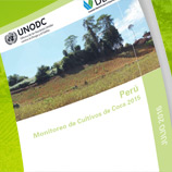 The 2015 Peru Coca Survey was presented in Lima by UNODC and the country's Government. Photo: UNODC