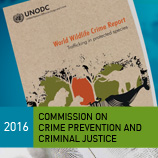 UNODC launches its inaugural World Wildlife Crime Report during the 2016 Crime Commission. Photo: UNODC