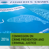 During this year's Crime Commission in Vienna, a panel of experts looked at the best approaches to deal with transnational organized fisheries crime. Photo: UNODC