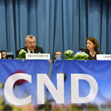 Consensus key to advancing balanced action on drugs, says UNODC Executive Director. Image: UNODC