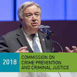'Much work to do and no time to waste' in cybercrime fight, says UN chief. Image: UNODC