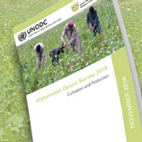 Sharp drops in opium poppy cultivation, price of dry opium in Afghanistan, latest UNODC survey reveals